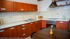 Apartament Zakopane Górski