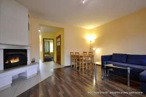 apartament-rodzinny-basen-sauna-jacuzzi-kominek